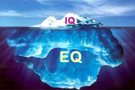 EQ-Emotional Intelligence for Peak Performance Shaheen's example